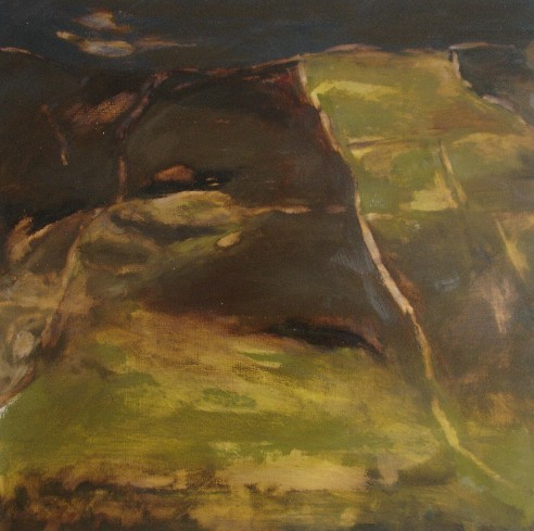 Cashleen Fields, Footprint, Tramyard Gallery, oil on canvas, 2008.