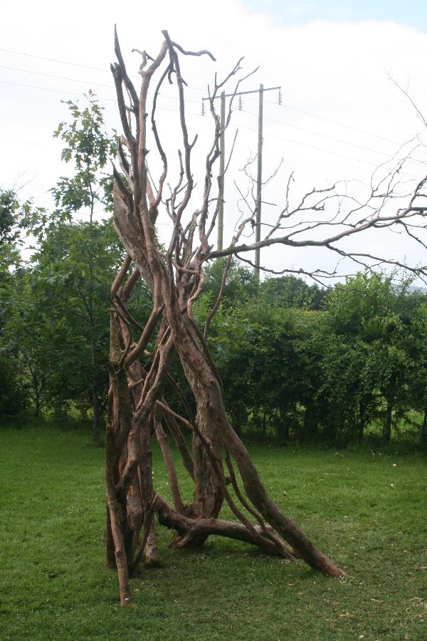 Outsider, Outside: Insight, Brigid's Garden, award winning site-specific installation, 2008